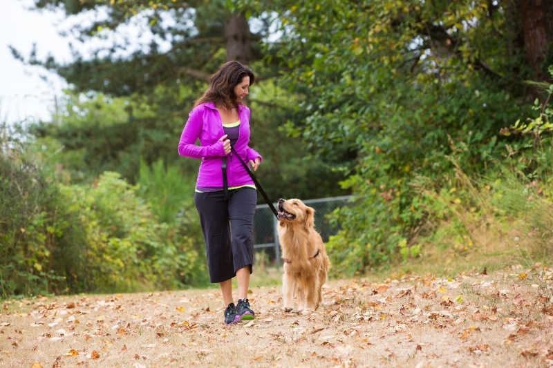 Gassi gehen gut für Hundehalter Gesundheit & Sicherheitsgefühl in der Nachbarschaft