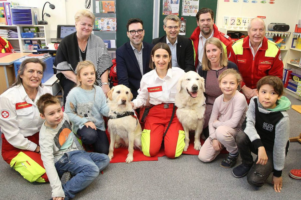 Begleithunde Hunde Volksschule Kindergarten