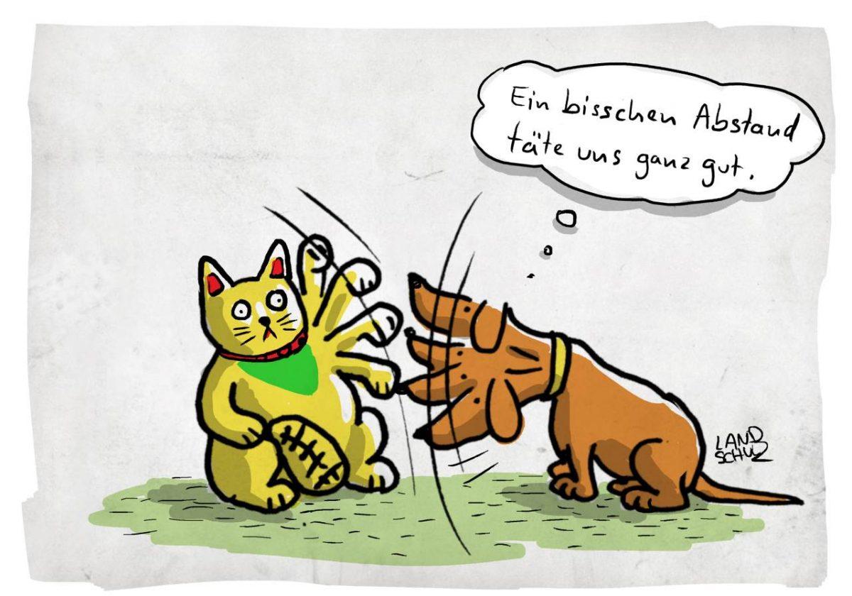 Cartoon Ausstellung Katz und Hund